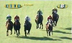 Contenido de la imagen Eddie Read Stakes 2011