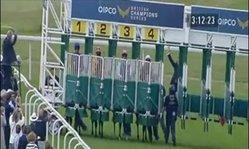 Contenido de la imagen Quipco Sussex Stakes - Frankel