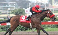 Contenido de la imagen Invictus superó a Dany  (Jockey Club del Perú)
