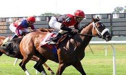 Contenido de la imagen Quebrada Shiner ganó en USA el Jazzy Stakes (Turfdiario)