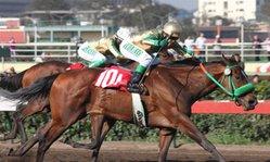 Contenido de la imagen Mr. Dany se coronó como el mejor juvenil (Jockey Club del Perú)