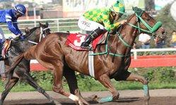 Contenido de la imagen Amir Khan logró su mejor triunfo (Jockey Club del Perú)