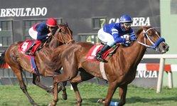 Contenido de la imagen Almudena clasificó al Pellegrini GR.I (Jockey Club del Perú)