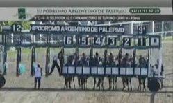 Contenido de la imagen Balada Sale - GP. Selección (Palermo)