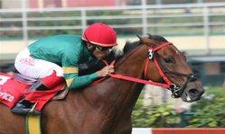 Contenido de la imagen Saralacia superó a Los Mateo (Jockey Club del Perú)