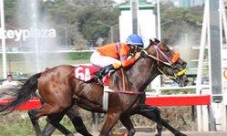 Contenido de la imagen Atila con lo justo sobre Cromático (Jockey Club del Perú)