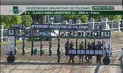 Contenido de la imagen 2012 Clasico Haras Argentinos (L) STAR RUNNER