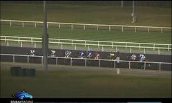 Contenido de la imagen Race 6 - Gulf News Handicap
