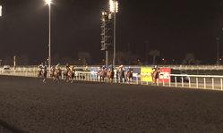 Contenido de la imagen Super Saturday - Race 7 - Al Maktoum Challenge Round 3
