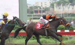 Contenido de la imagen Say no more superó a Andeluna (Jockey Club del Perú)