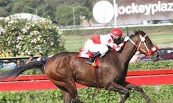 Contenido de la imagen Cruzada respondió al favoritismo (Jockey Club del Perú)