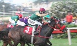 Contenido de la imagen Panterita venció de atropellada (Jockey Club de Perú)