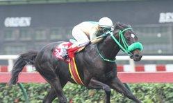 Contenido de la imagen Good Lucky Keny venció de un solo aliento (Jockey Club del Perú)