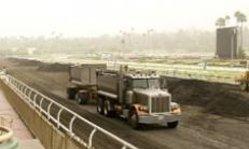Contenido de la imagen Santa Anita, otra vez sede de Breeders' Cup en 2013 (Turfdiario)