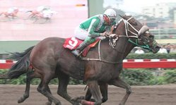Contenido de la imagen Bucher venció de atropellada (Jockey Club del Perú)