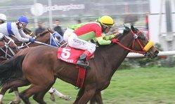 Contenido de la imagen Cubage superó por nariz a Gocek (Jockey Club del Perú)