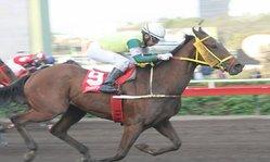 Contenido de la imagen Yen venció de atropellada (Jockey Club del Perú)