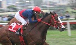 Contenido de la imagen Tontona respondió a las expectativas (Jockey Club del Perú)