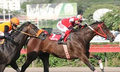 Contenido de la imagen Nishme superó a Good Shine (Jockey Club del Perú)