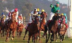 Contenido de la imagen Don Dionisio dio la sorpresa y se quedó con El Derby 2013 (emol.com)