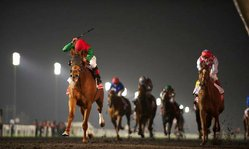 Contenido de la imagen Animal Kingdom brilló en la Dubai World Cup