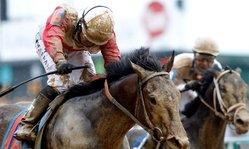 Contenido de la imagen Orb fue muy superior en el Kentucky Derby