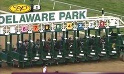 Contenido de la imagen Brujo de Olleros en el Carl Hanford Memorial Stakes 2013