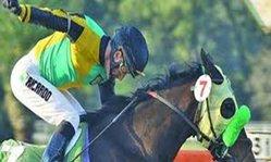 Contenido de la imagen Jorge Ricardo con dos fracturas tras una rodada (Turfdiario)