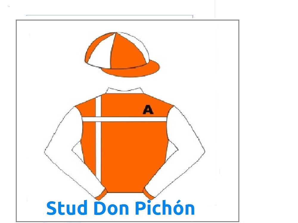 Stud Don Pichón
