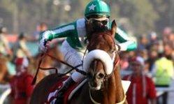 Contenido de la imagen A lo crack, Il Campione se quedó con El Derby (Turf Diario)