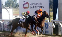 Contenido de la imagen Vitalita es la reina de Las Piedras, Guillermo Tell brilló en el Jockey Club