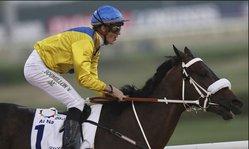 Contenido de la imagen Mubtaahij volvió a brillar y Sir Fever fue sexto en una jornada llena de complicaciones