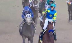 Contenido de la imagen 2015 Kentucky Derby - American Pharoah