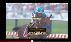 Contenido de la imagen 2015 Preakness Stake - American Pharoah