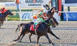 Contenido de la imagen Silver Fund y Bright Chris se destacaron en un muy buen domingo de carreras