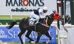 Contenido de la imagen El Conde Juan, primer ganador entre los 2013
